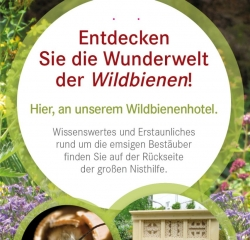 HHs! Wildbienen-infoTafel2 web